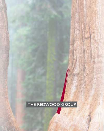 The Redwood Group landing page